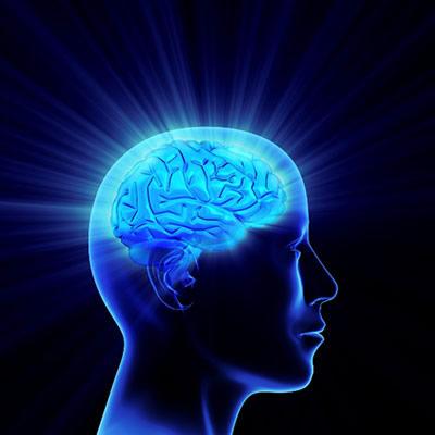 Big Bang du cerveau