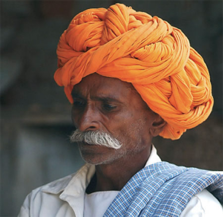 Brahmane
