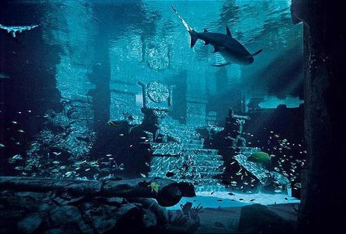 Cité perdue d'Atlantis