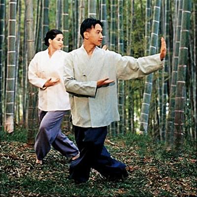 Pratique du Dahn Yoga