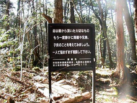 Forêt des suicidés