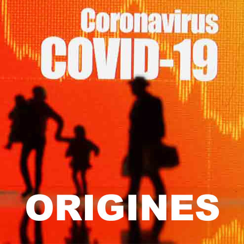 Les origines du COVID