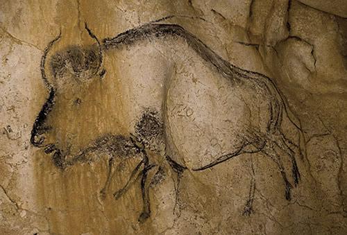 Peinture de bison dans une grotte