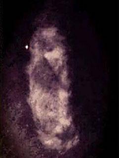Photo d'un bouc prise dans une maison hantée
