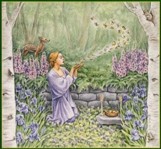 Image de Liste des plantes magiques