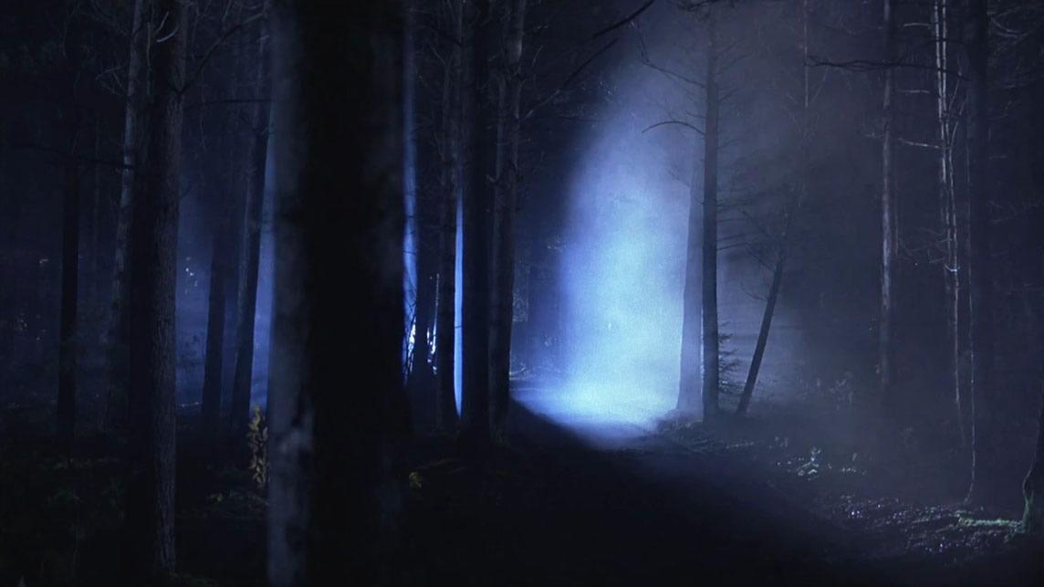 Forêt de Rendlesham