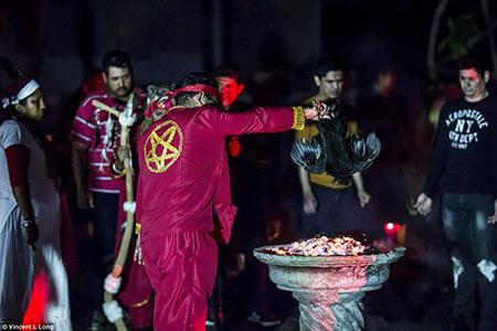 Sacrifice d'un poulet lors d'une messe noire au mexique