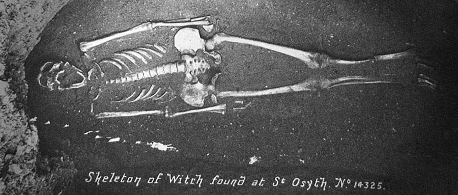 Squelette de la sorcière Ursula Kemp