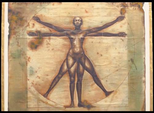 Symétrie bilatérale - Harmonia Rosales