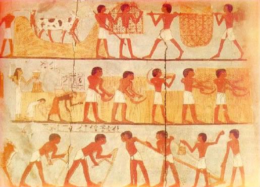 Image de L'organisation de la société égyptienne
