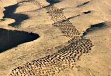 Nazca et la bande de trous