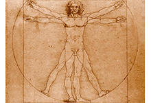 La dissection pratiquée au Vatican