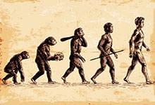 Les théories de l'évolution