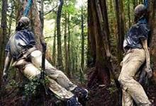 Les endroits maudits, partie 1 : la forêt des suicidés
