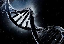 Le génome humain