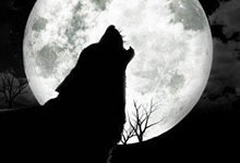 Histoires de loups-garous