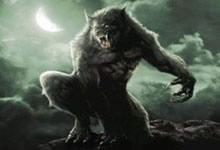 La lycanthropie, folklore ou réalité ?