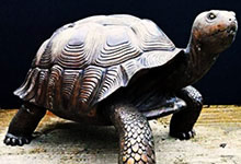 Ninurta et la tortue