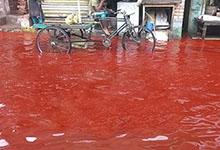 Une pluie de sang
